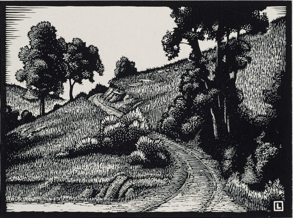 Illustration of a winding path going through a field with trees and shrubs