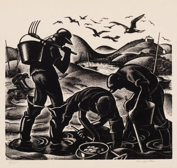 Four men work digging clams. They use buckets, clam rakes and there is a scene of hills, boat in water and small house in the distance, sea gulls are overhead.