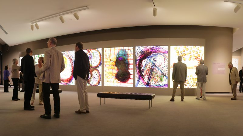 Interior image of adults in a gallery looking at colorful, large-scale prints on the wall