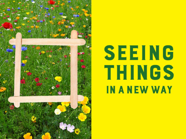 Green grass with twelve yellow flowers, five white flowers and eleven red flowers with the words Seeing Things in a New Way in green text on a yellow background