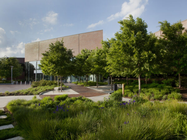 Exterior of WAM's entrance showing five trees, the brick circle drive and native grasses in the foreground