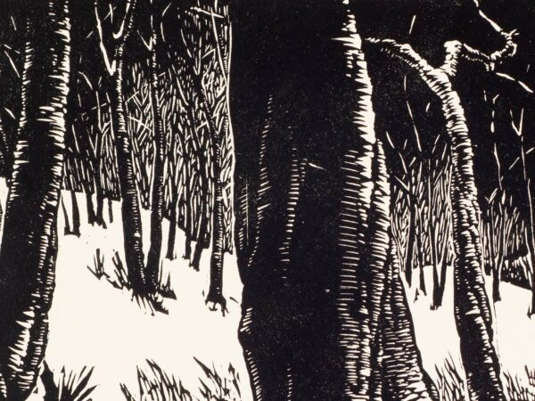 Black and White print of trees on a hillside